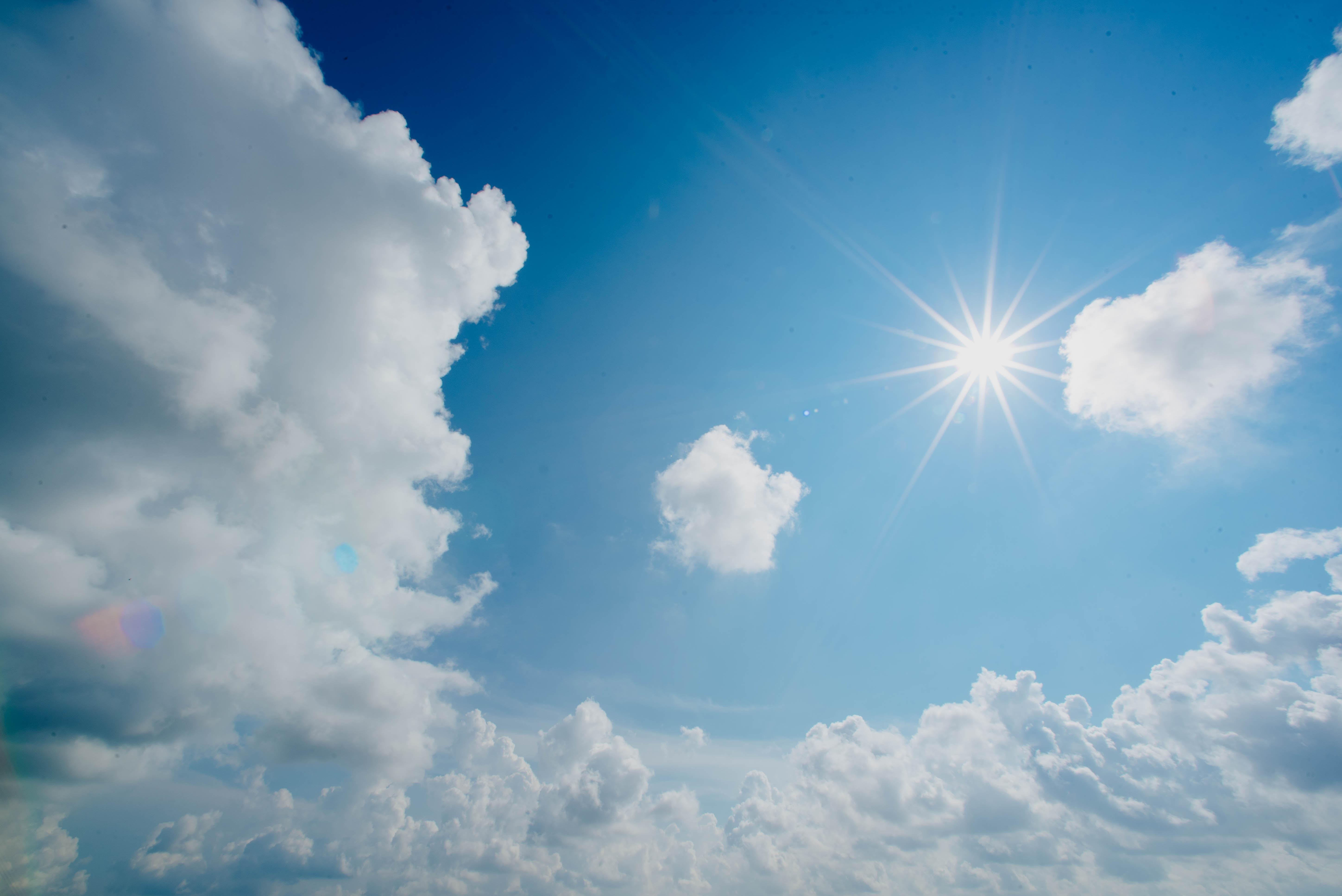 Die Sonne treibts voran