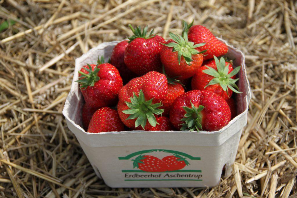 Erdbeerschale auf Stroh