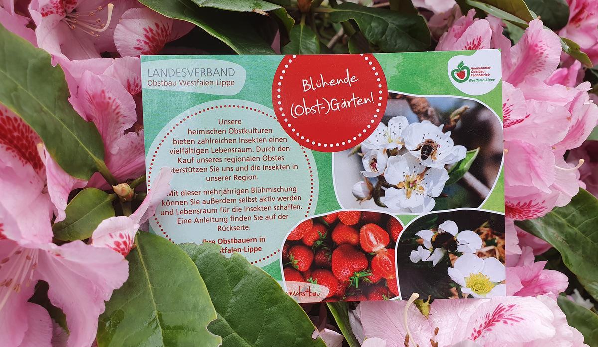 Blühende (Obst-)Gärten